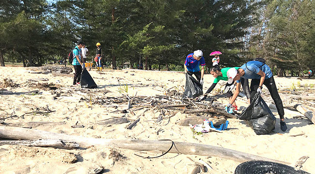 Beach clean-up sees waste haul