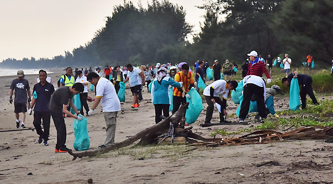 6.5 tonnes of trash collected at beach clean-up